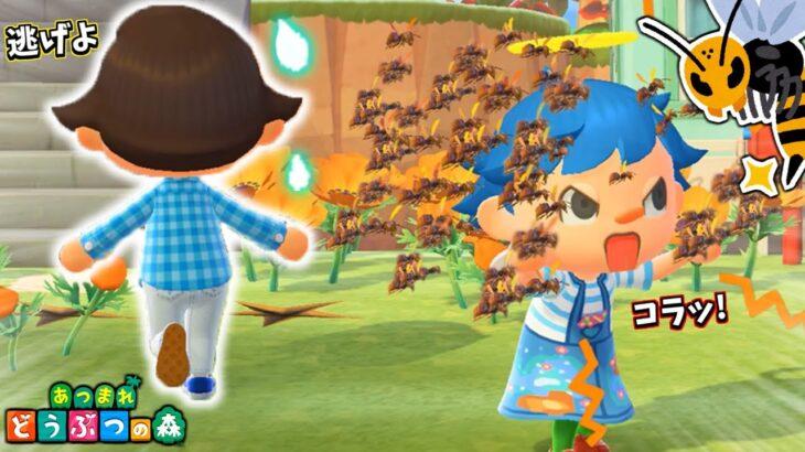 住人呼び出し機能使えばハチに刺されず助かる説!!【あつ森】【あつまれどうぶつの森検証】