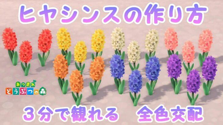 【花の交配】すぐわかるヒヤシンスの全色の作り方   交配手順表つき♪【あつ森】