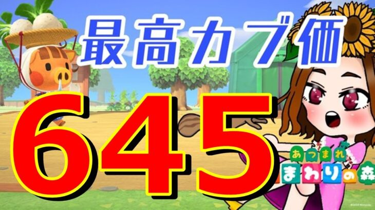 【あつ森】初見さん歓迎!最高カブ値645ベル★レシピ覚え放題島開放中!