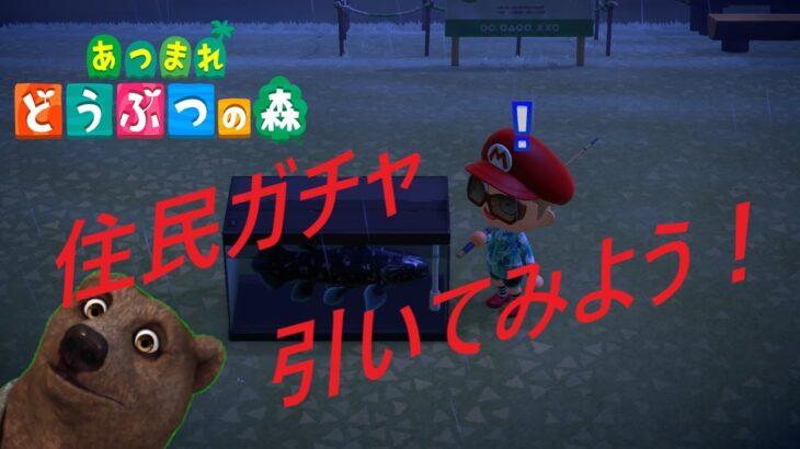 【#あつまれどうぶつの森】離島ツアー Day2【Nintendo Switch】