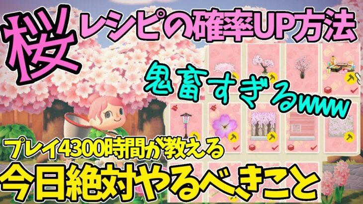 【あつ森】知らないと損!桜レシピの確率UP方法&今日絶対やるべきこと!あつ森プレイ4300時間の実況