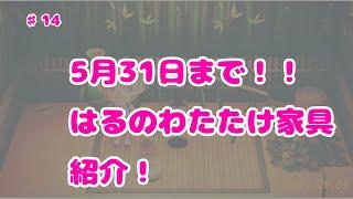 5月31日まで!!はるのわかたけレシピ家具紹介【あつ森】