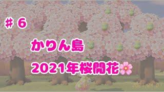 あつ森 2021年桜開花 効率レシピ集め