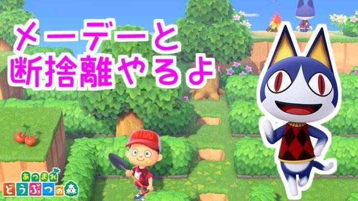 【あつ森】アプデ来たな!という話をしつつメーデーと断捨離!5/1【LIVE】