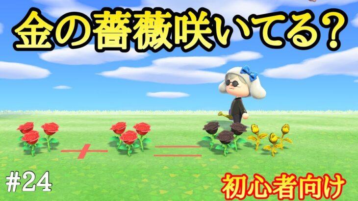 【あつ森】金のバラの作り方!超簡単だよ!初心者必見
