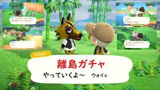 【あつ森】出会ったオオカミが可愛すぎた。離島ガチャ50連ではない。【あつまれどうぶつの森】#14
