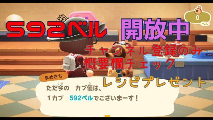 【開放中】カブ価592 レシピプレゼント 詳細は概要欄で  あつまれどうぶつの森 Animal Crossing 【ライブ】