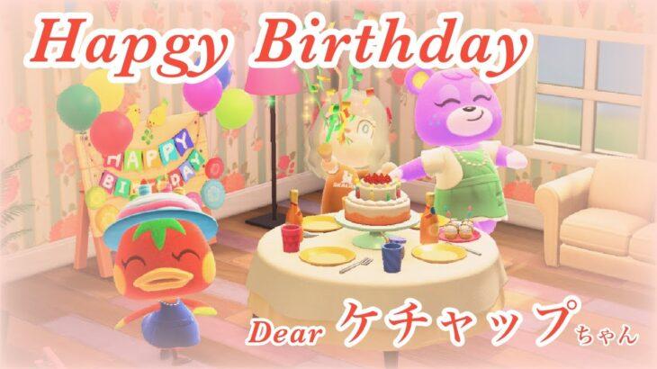 【あつまれどうぶつの森】Happy Birthday ケチャップちゃん【新人Vtuber】