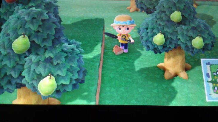 あつまれ どうぶつの森 Nintendo Swith  ゲーム配信