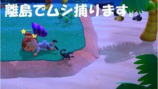 【あつ森】離島でムシ取り最終回?サソリ怖す。【あつまれどうぶつの森/animalcrossing】