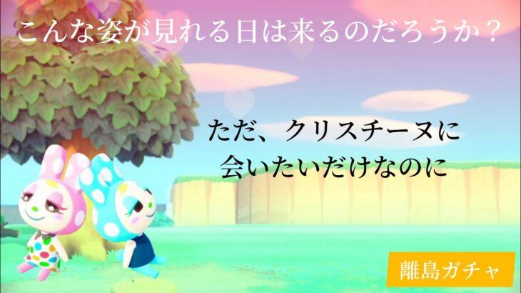 【あつ森】離島ガチャ祭り!クリスチーヌに会えるまで終わりまてん!!!【離島ガチャ#17】
