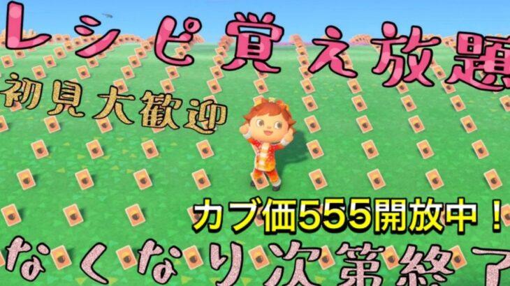 【あつ森】レシピ覚え放題!カブ価555開放中!【初見大歓迎!】☆参加型☆