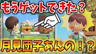 【あつ森】まだゲットできない新家具の月見団子をゲットしてる人がいたんだけど!?【あつまれどうぶつの森/Animal Crossing】