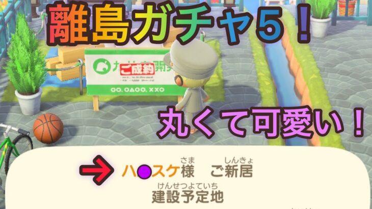 【あつ森】離島ガチャ5!