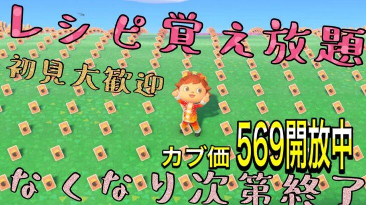 【あつ森】レシピ覚え放題!カブ価569開放中!【初見大歓迎!】☆参加型☆