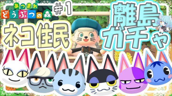 【#あつ森】ネコ化計画離島ガチャ!お目当てのネコ住民と出会えるのか!?【#あつまれどうぶつの森/Animal Crossing】【かんみ/らむねこ島/#24】