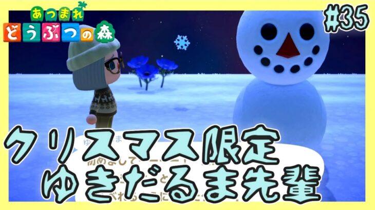 オシャレで集めたくなる冬限定クリスマスDIYレシピ【あつまれどうぶつの森】#35