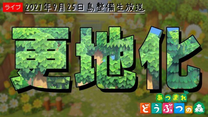 【あつ森】島整備 更地化作業【あつまれどうぶつの森】