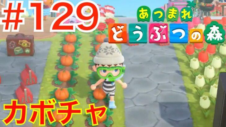 #129 カボチャ🎃を収穫しよう!DIYレシピ探し【あつまれどうぶつの森】