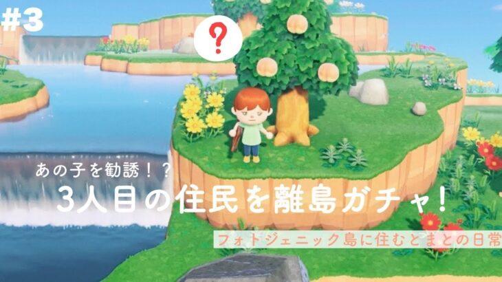 【まなはな】3人目の住民を離島ガチャ!あつまれどうぶつの森【フォトジェニックMG】