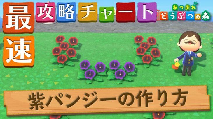 【あつ森】世界一シンプルな紫のパンジーの作り方|咲かせ方【あつまれどうぶつの森】
